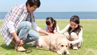 華安犬類寵物飼養人責任保險